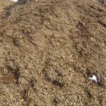 Double Shredded - See recycling tab to the left to see how we make this mulch!
